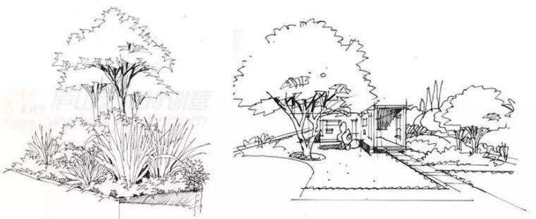 作为景观设计师必须掌握的景观线稿表现_20