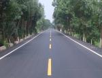 沥青混凝土路面施工工艺(13页)