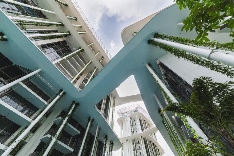 新加坡Tembusu雨林住宅-11