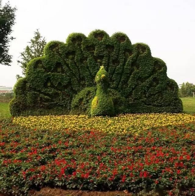 80个极美植物雕塑_49