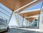 青岛邮轮母港客运中心建筑摄影/三景影像