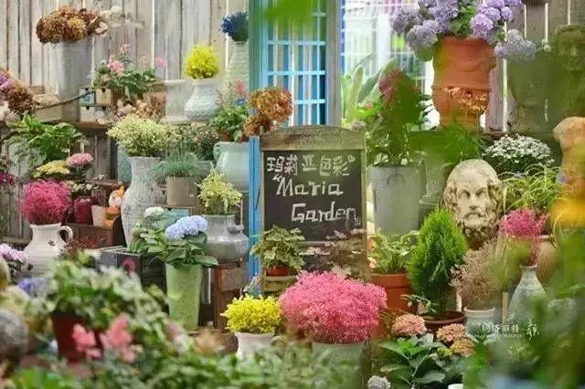他建了座2亩的鲜花小镇,满足你对花园的所有幻想