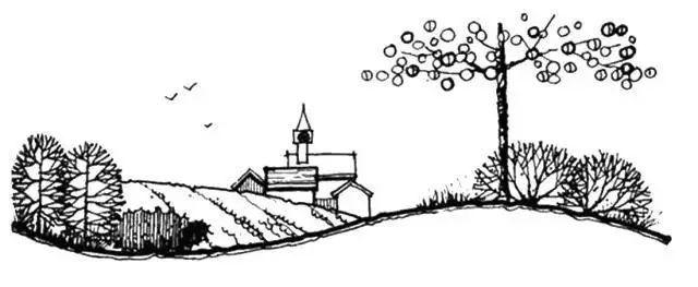 """这些必备的""""植物造景"""",不止是种树种花_24"""