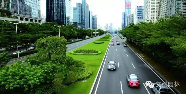 城市道路的植物配置设计原则