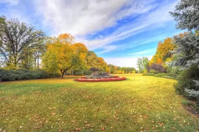 如何建立高质量景观花坛,绝对干货!!