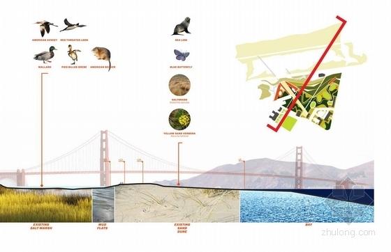 [国外]休闲滨水公园景观方案设计-剖面图