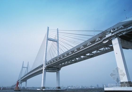 [广东]2015年大桥桥面排水工程施工招标文件(合同 114页)