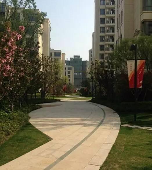 景观中的园路设计_5