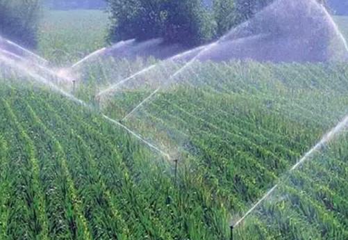 关于农业节水灌溉技术,你了解多少 水利施工 筑龙水利工程论坛