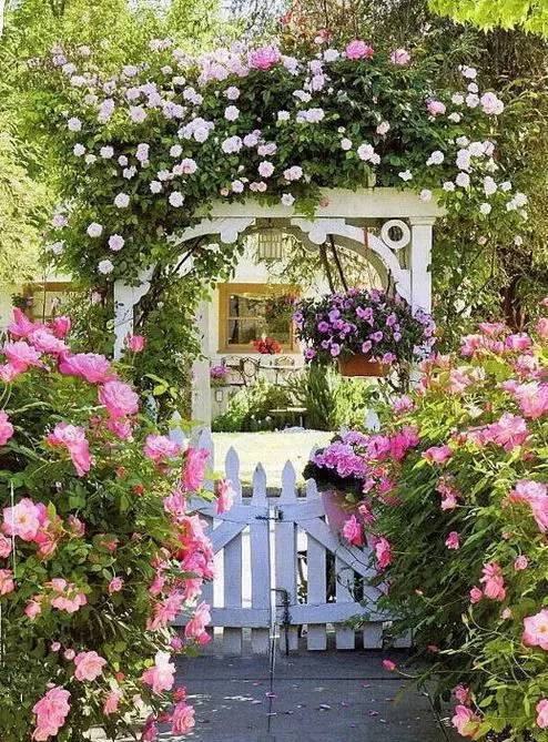 有个庭院,将是今生最大的幸福_33