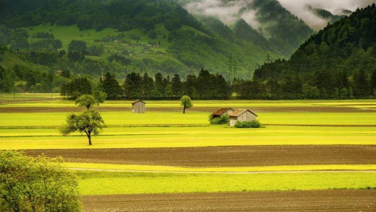 8个发达国家乡村治理的成功模式,每一个都和房地产不沾边