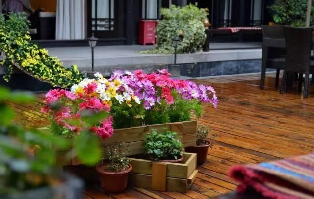 愿有一个院子,在四季里等你