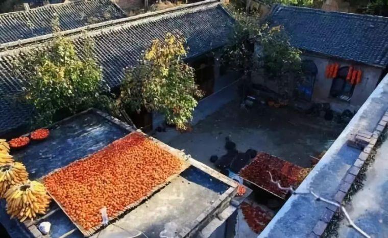 这才是中国人的院子,秋天美到骨子里_37