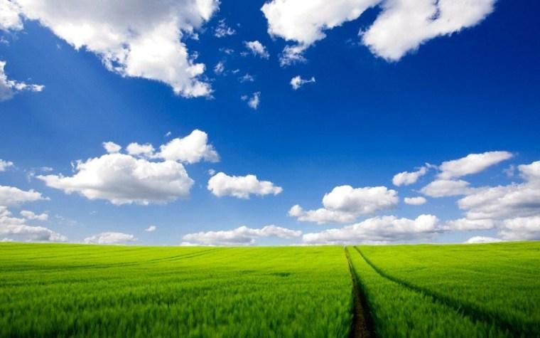 送您一股清新的田园风。_3