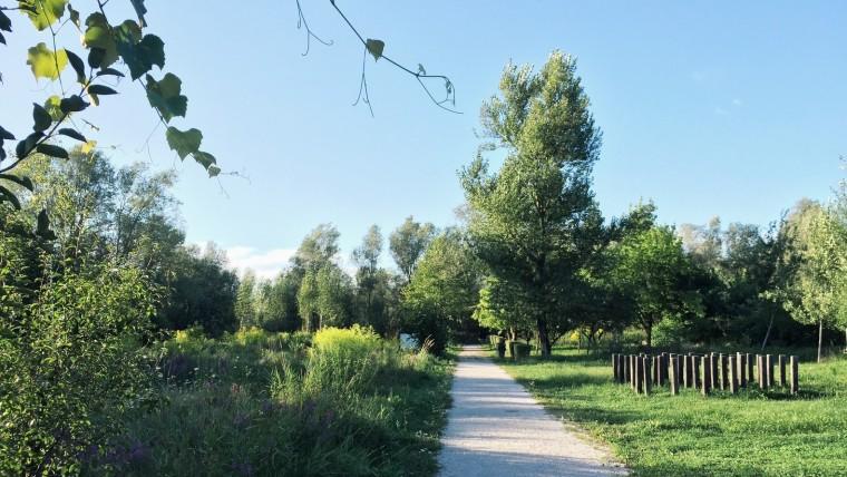 斯洛文尼亚首都的市镇公园-3