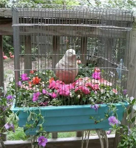 21种方法种花,比在花盆里美十倍!_19