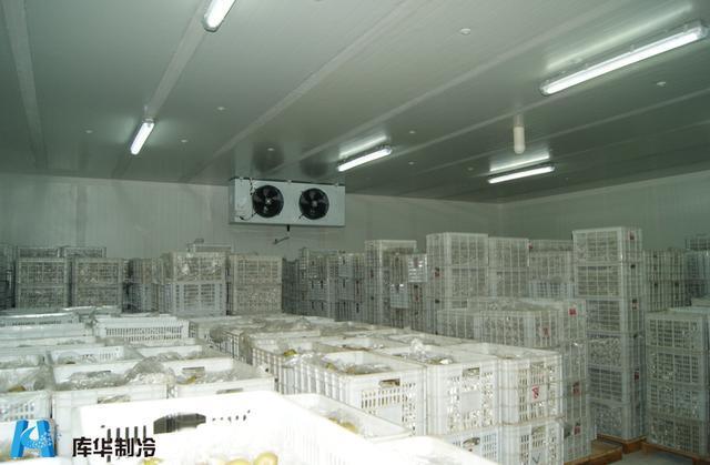 蔬菜冷库安装造价的主要影响因素