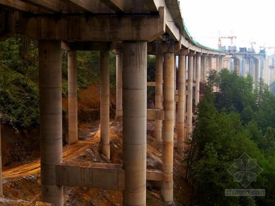 连续刚构特大桥实施性施工组织设计(98页)