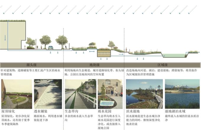 湿地雨水管理设计