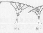 钢管树状结构设计