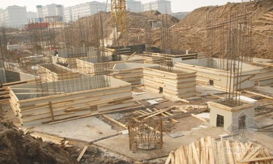 FRTP建筑塑料模板的开发及工程应用(135页,附大量现场图片)