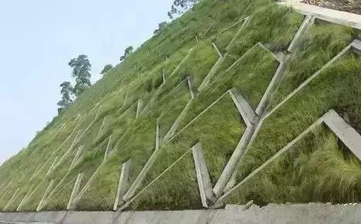 常见基坑支护及生态边坡支护形式特点详解分析!_5