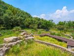 如水绵柔——重庆园博园江南湿地公园