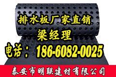 济南塑料排水板厂家