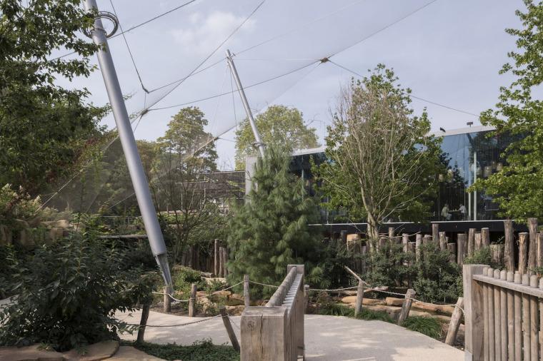 当代Antwerp动物园改建-3
