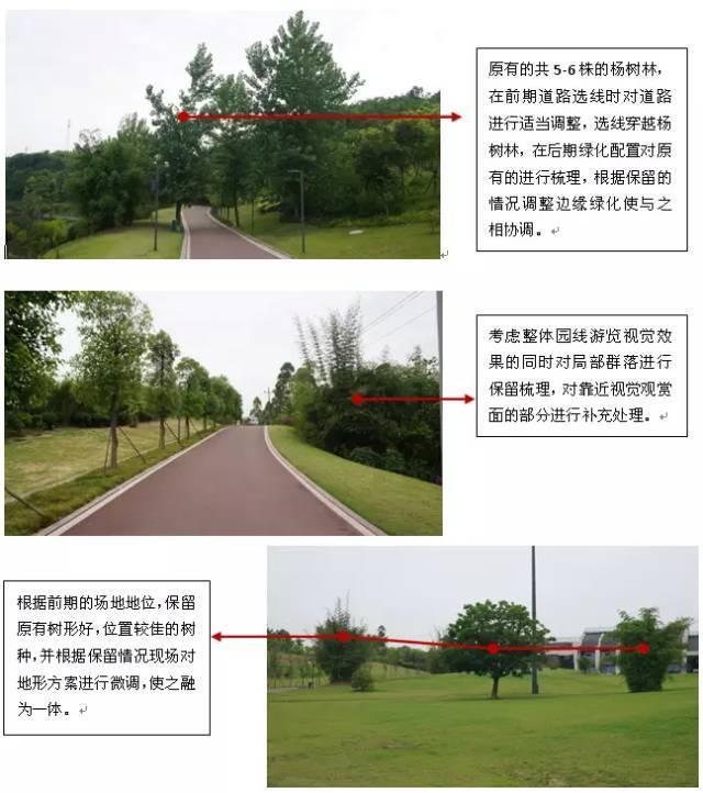 最专业的景观苗木种植设计思路,没有之一!