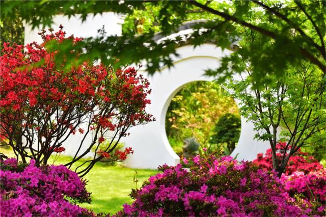 造园可以无山无水,但不能缺少它..._22