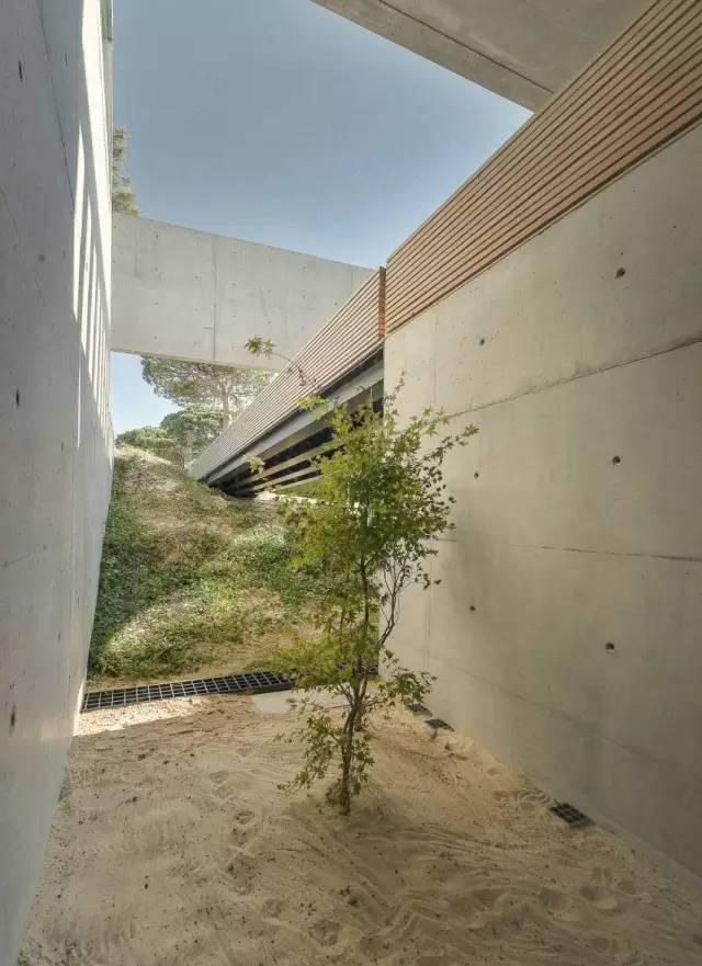 把屋顶设计成空中泳池,只有鬼才,才敢如此设计!_34