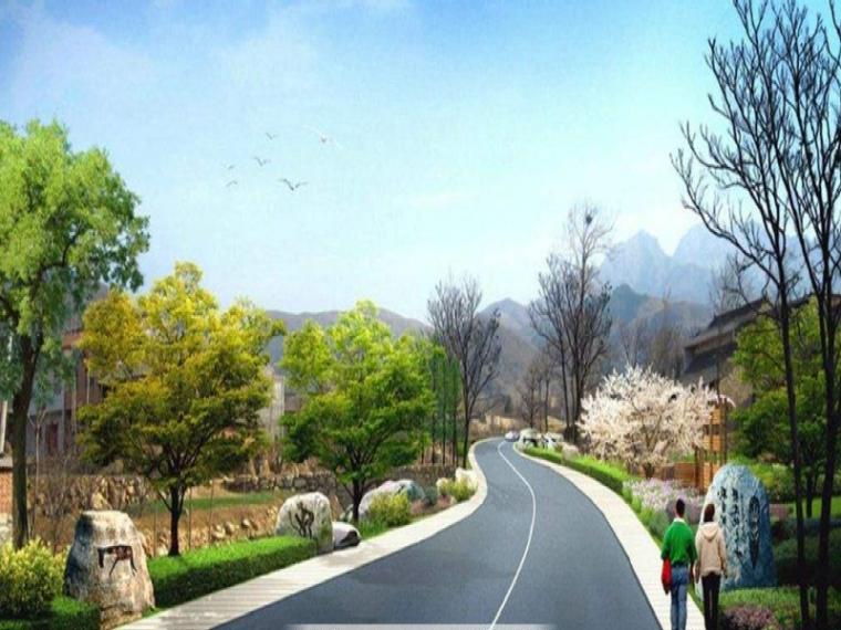 城市道路绿化规划与设计