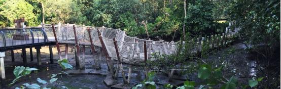 案例分享|新加坡双溪布洛湿地公园景观设计_15