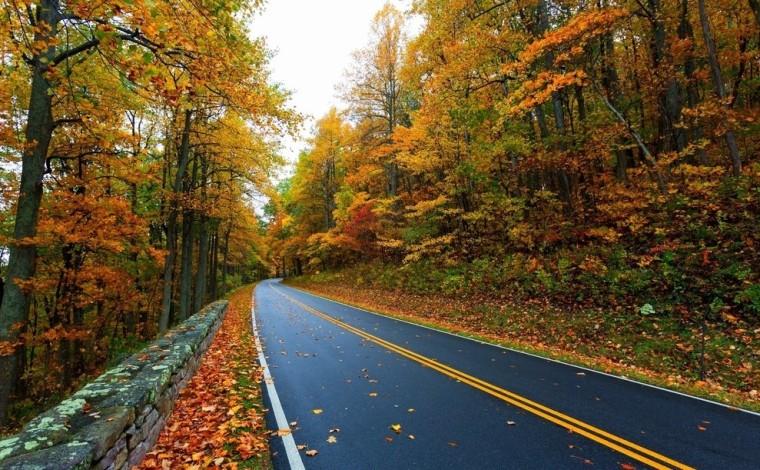 公路工程竣工验收表