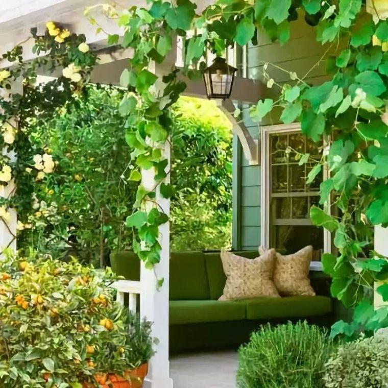 花园驻新颜,景观色彩搭配_26
