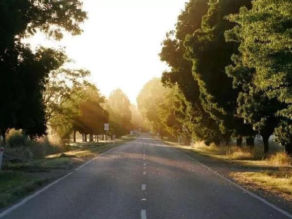 道路施工的季节性问题处理方案汇总,好用
