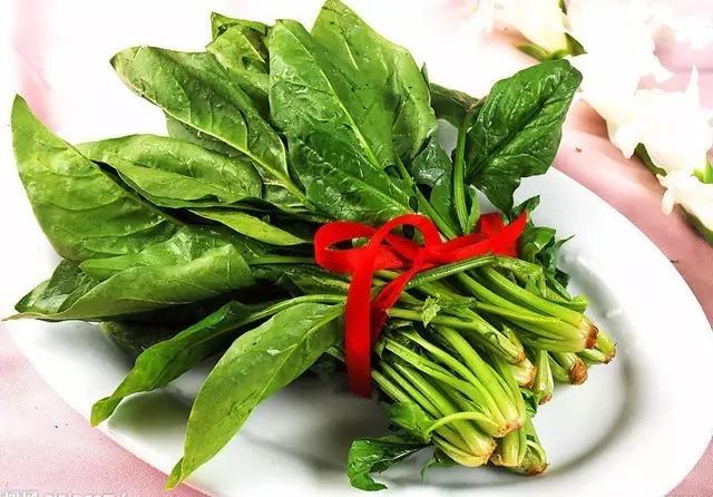 种下这些10天就能吃的菜,正好年底打火锅_19