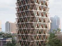 城市中的垂直农场—生态系统大楼