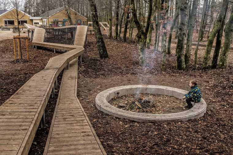 丹麦校园里的神奇树林景观-14