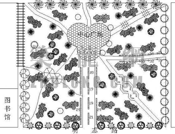 月季植物专类园设计