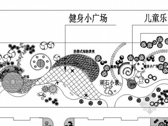 某广场植物种植施工图设计