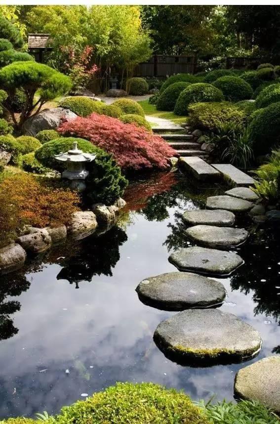 这是个自家的院子?_1