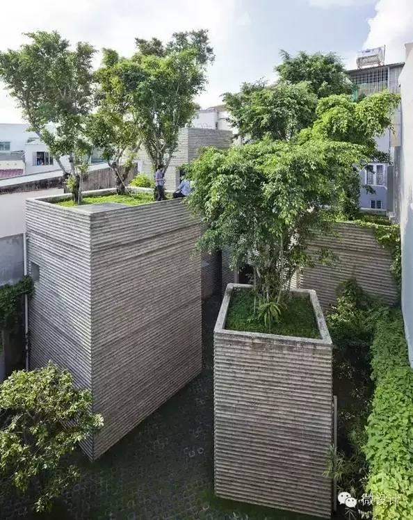 你有想过把树种在屋顶上吗?_1