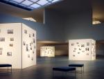 摄影展厅3D模型下载