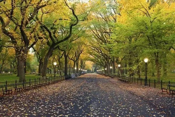 美国景观设计之父|奥姆斯特德和他的纽约中央公园_15