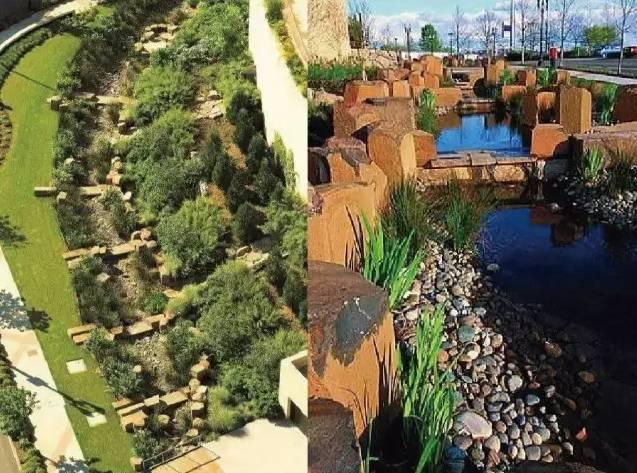 最新动图图解!雨水花园设计方法+工作原理+经典案例……_3