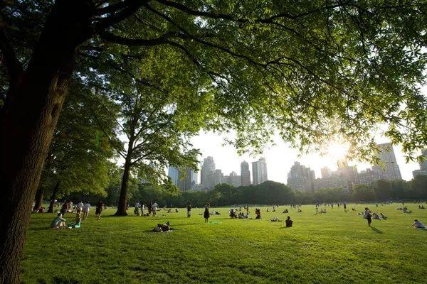 美国景观设计之父|奥姆斯特德和他的纽约中央公园_18