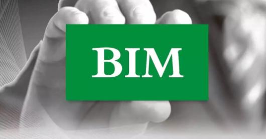 关于BIM表现的问题