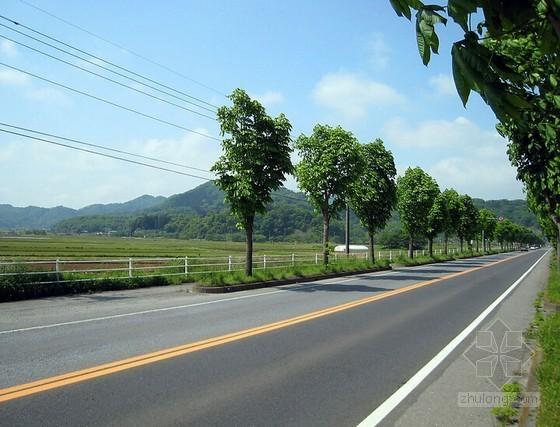 [四川]道路工程监理规划(包含排水工程)
